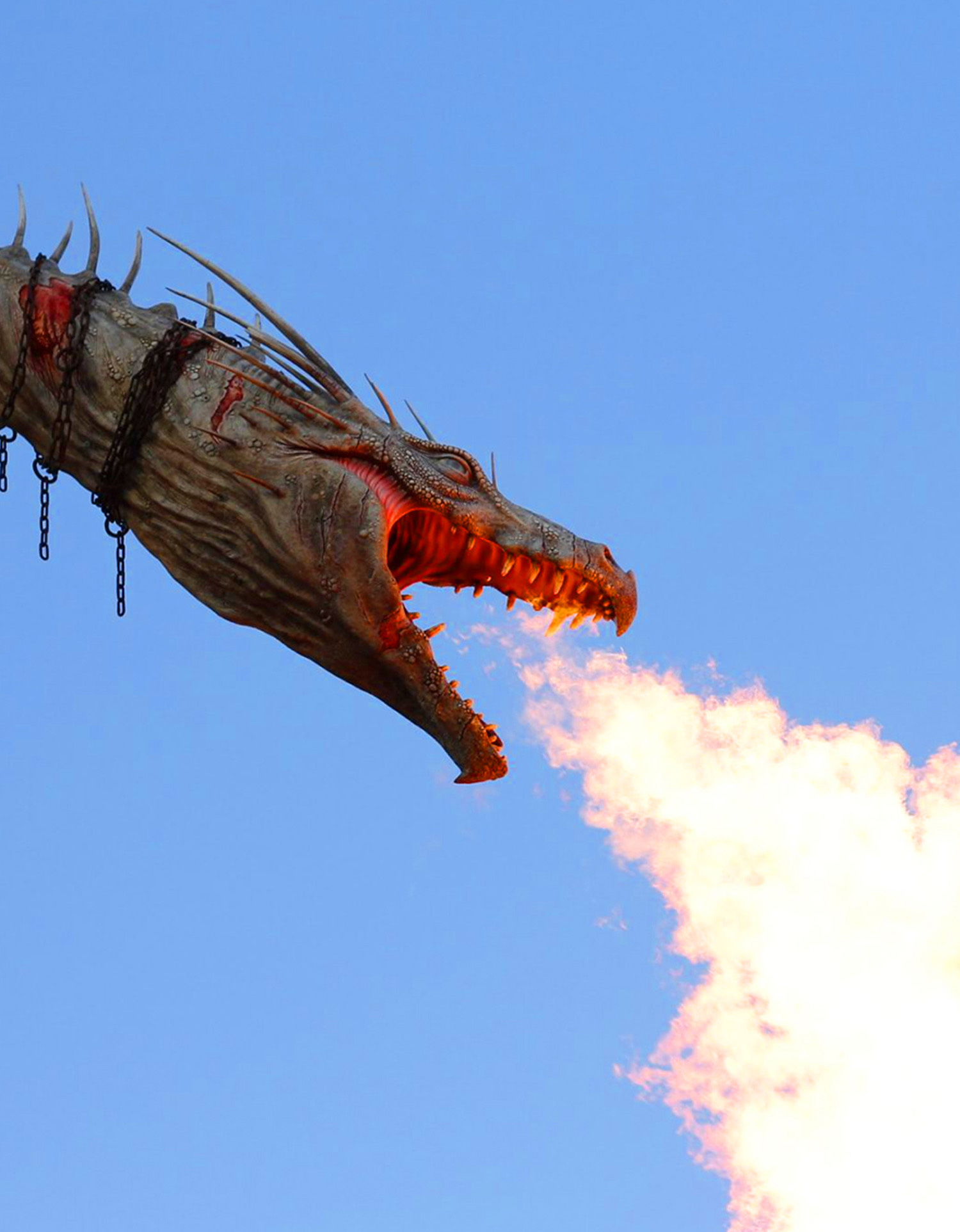 Fire Breathing White Dragon