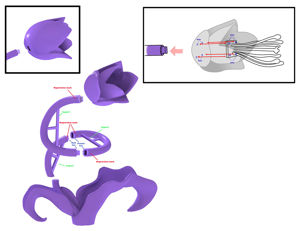 Schematic for Keyed Master Positive
